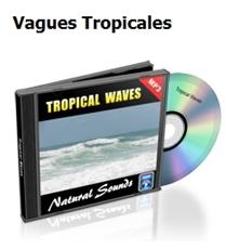 4_Vagues-Tropicales